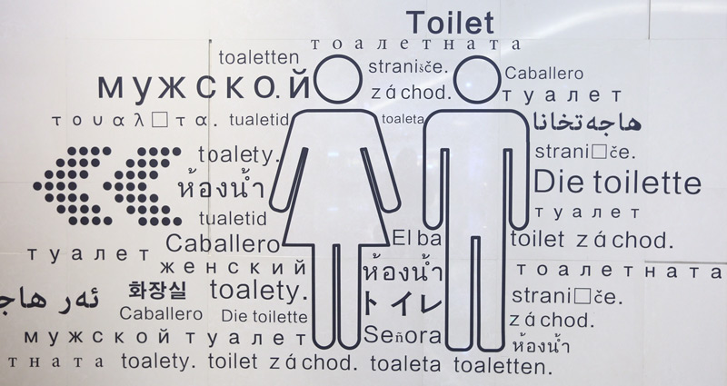 Toilet sigh with Japanese English and multilingual translations
